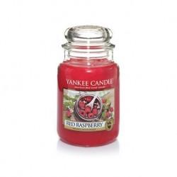 Yankee Red Raspberry 623g